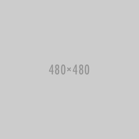 bus4-portfolio-1